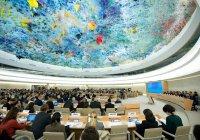 ООН назвала сторонников сирийского правительства террористами