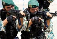 В Кремле прокомментировали возможный выход иранских войск из Сирии
