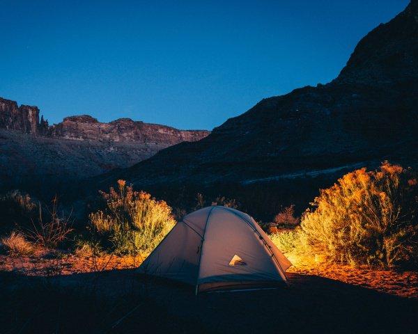 Так как плесень появляется в большинстве домов, она решила переехать жить в палатку