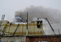 Стала известна главная ошибка пожарных при тушении «Зимней вишни»
