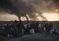 Жители иракского города расправились с главарем ИГИЛ