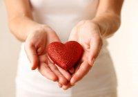 «Жидкое сердце» создали ученые из Австралии (ВИДЕО)
