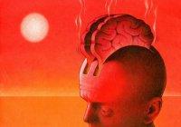 Ученые: Жара серьезно ухудшает работу мозга