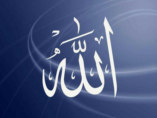 Коран о любви ко Всевышнему