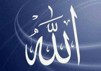"""Почему в Коране говорится """"бойтесь Аллаха"""", но не говорится """"любите Аллаха""""?"""