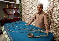 Житель Индии подстриг рекордные ногти (ВИДЕО)