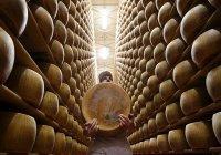 Кредиты под залог сыра начали выдавать в Италии