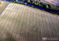 Древний хендж найден в Ирландии (ВИДЕО)