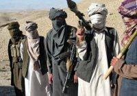 Российский дипломат: афганцы доверяют талибам больше, чем властям