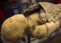 Ученые Египта приблизились к раскрытию секрета мумификации