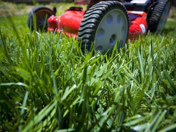 Во время покоса мужчина повредил провода газонокосилки, из-за чего получил удар током и умер на месте