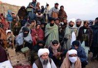 «Талибан» прокомментировал информацию об отказе от терактов