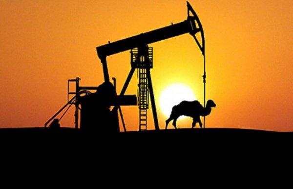 Саудовская Аравия прогнозирует снижение запасов нефти.