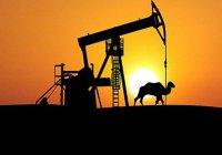 В Саудовской Аравии объявили о снижении мировых запасов нефти