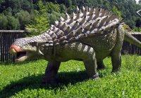 Ученые нашли самого «бронированного» динозавра