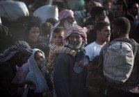 Семь миллионов сирийских беженцев нашли приют в 45 странах
