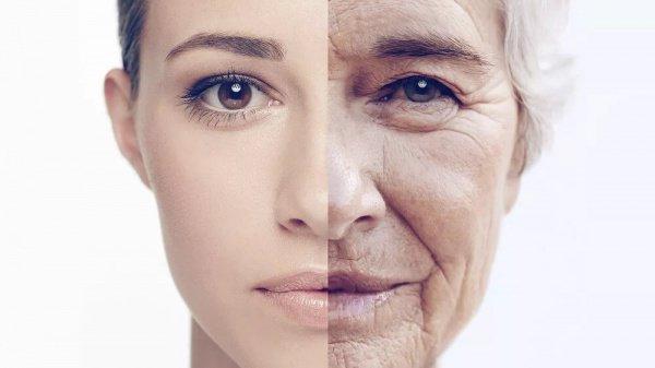 Открыт способ остановить старение тела