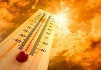 Ученые установили связь глобального потепления и самоубийств