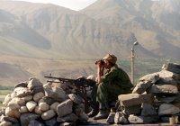 В Киргизии обеспокоены угрозой вторжения ИГИЛ и «Талибана»