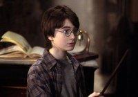 Волшебная палочка Гарри Поттера обучит программированию (ВИДЕО)