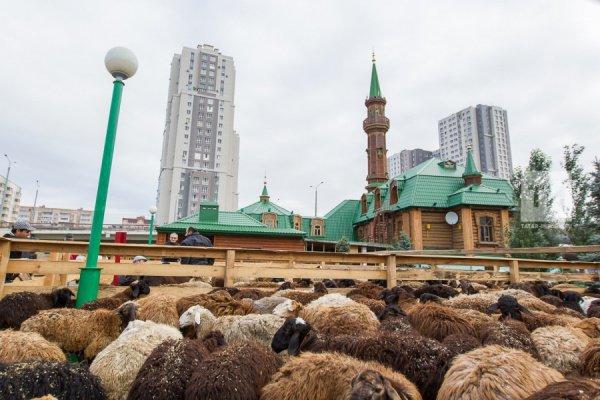 В казанских мечетях готовятся к Курбан-байрам.