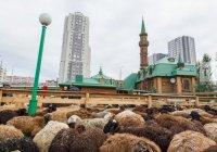 В мечетях Казани начали подготовку к Курбан-байрам