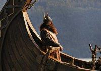 Шмели прибыли в Исландию вместе с викингами