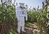 Нейросеть поможет растениям покорить космос