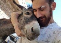 Айболит из Турции: Хасан Кизил подарил жизнь более 300 животным