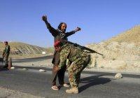 В Афганистане властям сдались главарь и 200 боевиков ИГИЛ