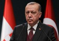 Жители Германии высказались против визита в страну Эрдогана