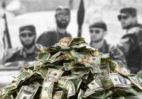В Петербурге задержали гражданку Узбекистана, отправившую ИГИЛ 1 млн рублей