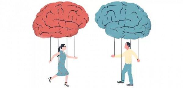 Нейробиологи полагают, что это обусловлено гормональными различиями женского и мужского организма