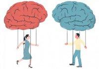Ученые: женский мозг «слабее», чем мужской