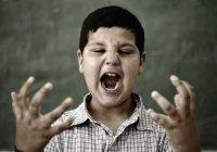 Учителей научат вычислять школьников-агрессоров