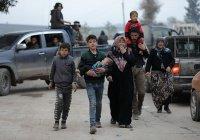 В Дамаске запустили программу помощи вернувшимся беженцам