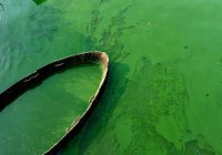 Кислотный цвет озера в Китае напугал туристов (ВИДЕО)