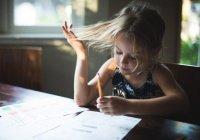В России могут отказаться от школьных домашних заданий