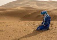 Молодой сахаб, просивший у Пророка (мир ему) разрешение на прелюбодеяние