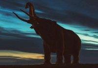 В США рабочие нашли доисторическое животное