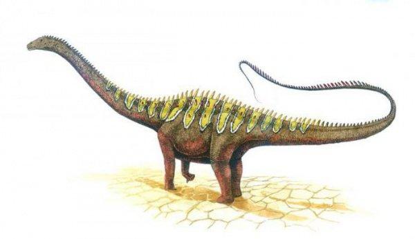 Находка значима для изучения распределения и эволюции животного мира того времени