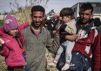 Комитет по содействию возвращению беженцев на родину создали в Сирии