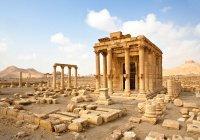 Стало известно, когда Пальмира примет туристов