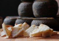 Самый древний в мире сыр оказался смертельно опасным