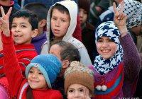 Больше 500 тыс. детей начнут учебу в провинции Алеппо