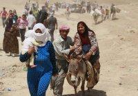 Свыше 1,2 млн беженцев вернулись в Алеппо