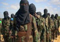В Таджикистане террориста ИГИЛ осудили на 17 лет