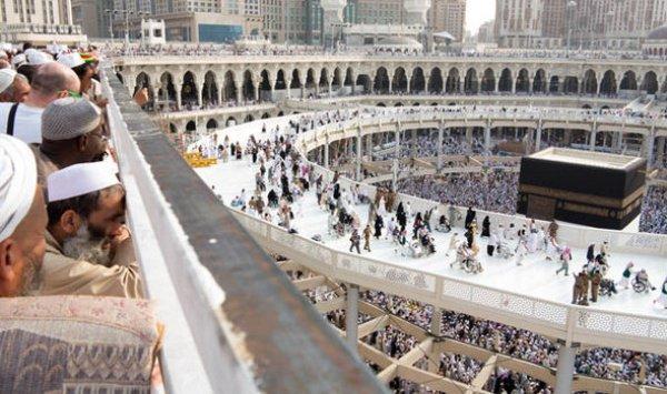 Помимо иностранцев в качестве паломников официально зарегистрировались 233 740 приверженцев ислама, проживающих в Саудовской Аравии