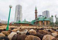 Как пройдет Курбан-байрам в городах и районах Татарстана?