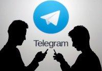 Telegram обязался передавать IP-адреса и телефоны террористов спецслужбам